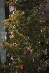 christkindlmarkt_2011-46