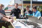 fruehlingsfest_2012-20